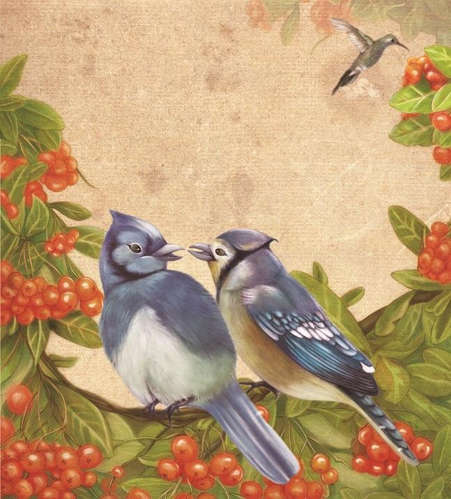 两只鸟的爱情故事