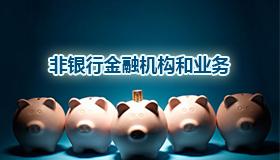 非银行金融机构和业务