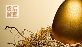 贷后管理——风险分类、贷款损失准备金的计提、不良贷款管理