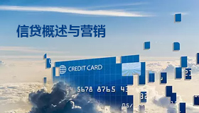 公司信贷概述及营销策略